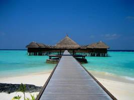 Bridge to paradise by Pecetta