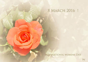 IWD 2016 by DanStefan