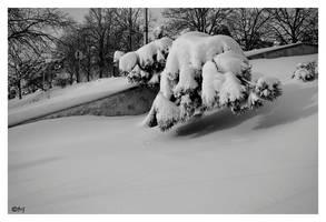 Winter Fantasy 17 by DanStefan