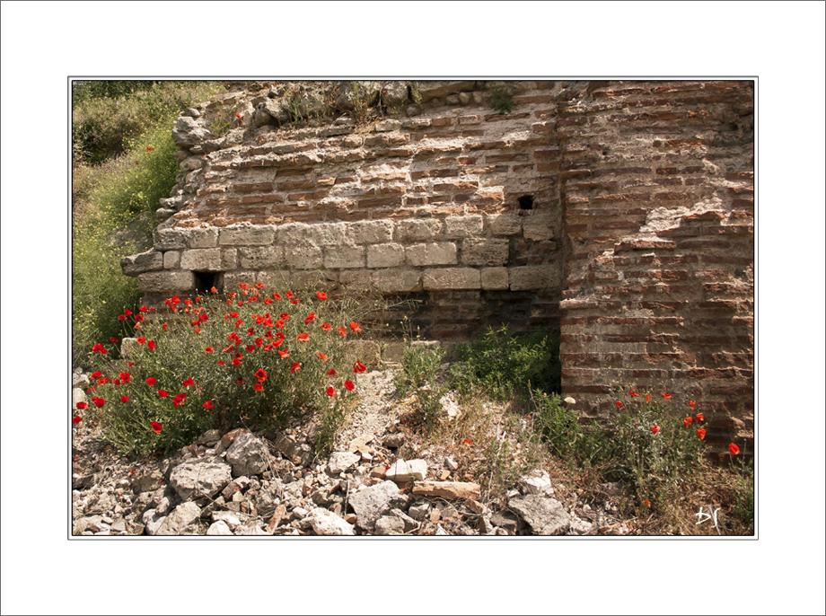 The life of ruins by DanStefan