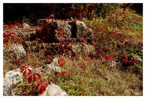 Blooded Land by DanStefan