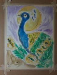 Peacock 45 by loretta-nash