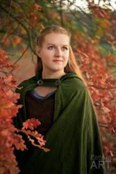 Elf woman by papaja94