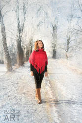 Winter romance by papaja94