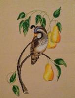 PARTRIDGE IN A PEAR TREE ~  by suziewinkler