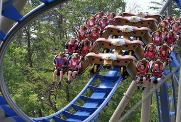 Wild Eagle - Dollywood Pigeon Forge USA by Phi1997