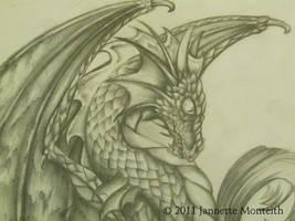 Dragon Profile by NightfyreKVesia