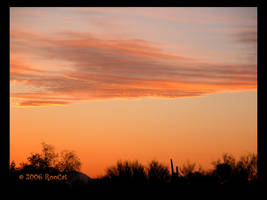 Wispy Oranges Spring Sunset by RooCat