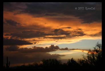 BobCat Summer Monsoon Sunset by RooCat