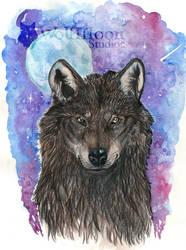 Black Wolf by wolfmoonie