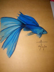 FishIndisDress by edozeiru