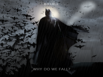 Why Do We Fall? by Gellyh
