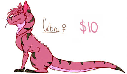 Cobra Adoption by zimpuppy