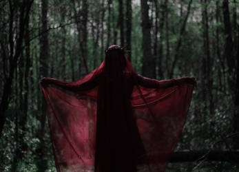 The red ghost of autumn in the forest of spring by NatalieVing