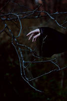 Pale hand of autumn melancholy by NatalieVing