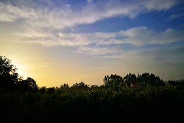 Morning Walk Project 204-2 by SaraQ2