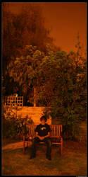 Bench at Night by naiveamoeba
