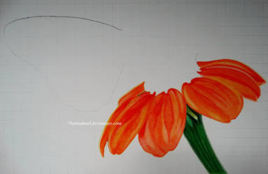 WIP I - Butterfly on a flower by LarissaBoef