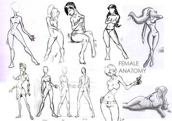 female body by cavalars
