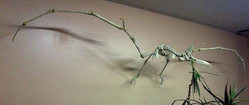 Foam restoration of a Guidraco venator (pterosaur) by helderdarocha
