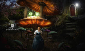 Coming in Wonderland by EvyLeeArt