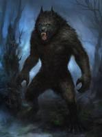 Werewolf by TsimmerS