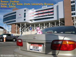 Pinkie Pie at Bronco Stadium by Framwinkle