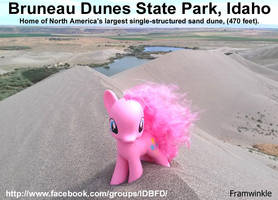 Pinkie Pie at the Bruneau Sand Dunes by Framwinkle