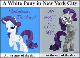 NYC Rarity by Framwinkle