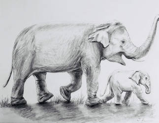 Elephants by miladyartist