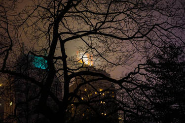 New York - Central Park at night by Akentmen
