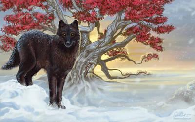 Shaggydog by CarrieBest