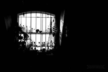 Window by fucute