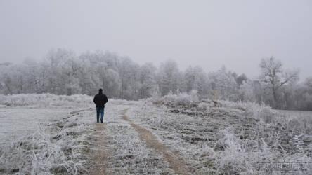 Frozen Scenery by fucute