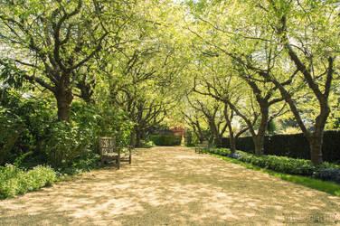 Capel Manor Gardens London by fucute