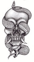 Skull and reptile 2 by tjiggotjurring