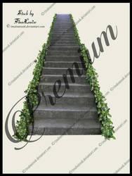 Steps by TinaLouiseUk