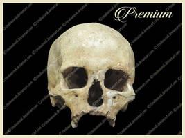 Skull png by TinaLouiseUk