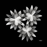 Fractal Minimalism by baba49