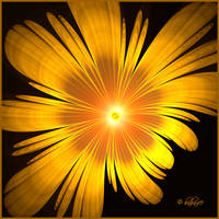 Fractal Flower - Yellow by baba49