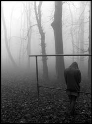 foggy by myangle