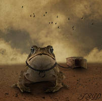 Doug the Pet Toad by TSWright