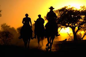 Horse safari by jetstream26