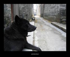 China2006: protection by maifaun