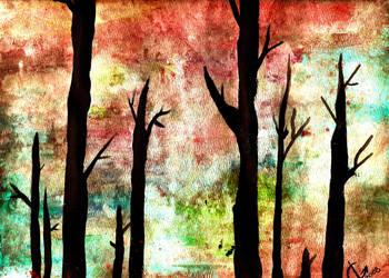 Web of Sky's by SchemaTree