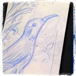 bird by MixGray