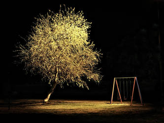 Play Park at night by goose77