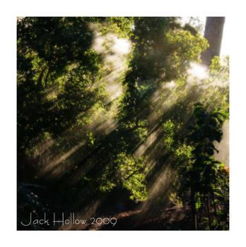 Water Haze by jackhollow
