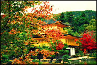 golden pavilion by soyotome