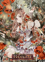 .Magic Knight Contest: Fairy. by Hetiru